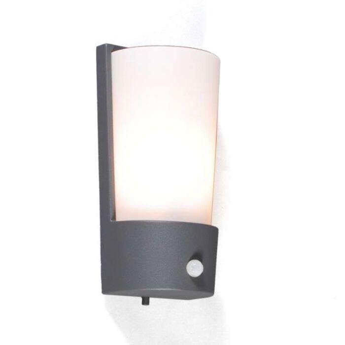 Vonkajšia-lampa-Laval-IR-grafit